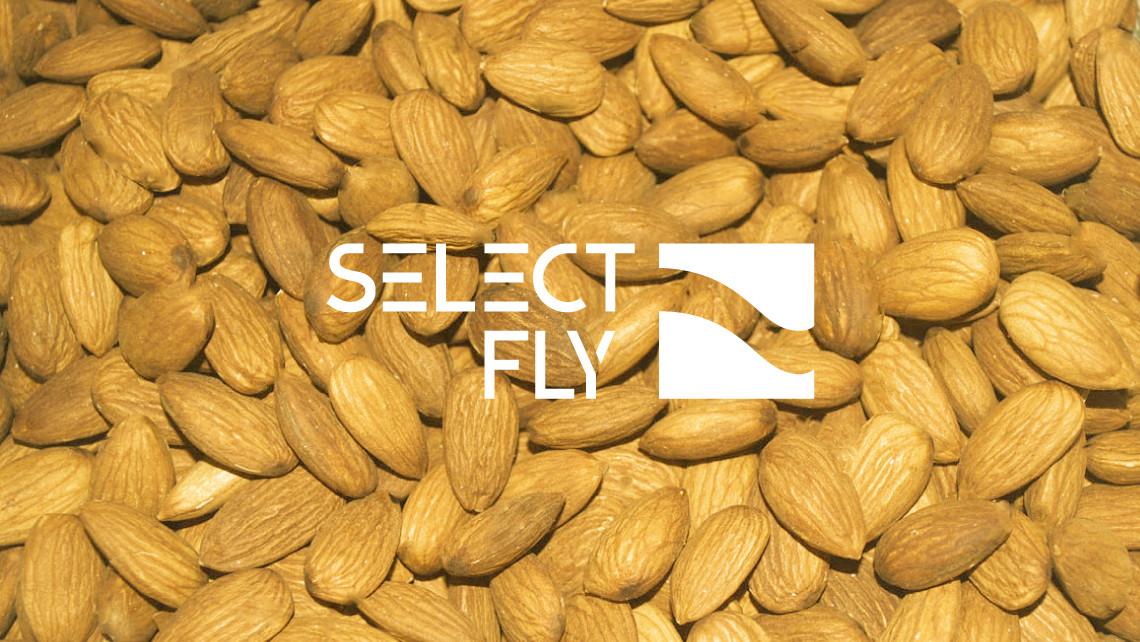 Select Fly - Logotipo imagen - EADe