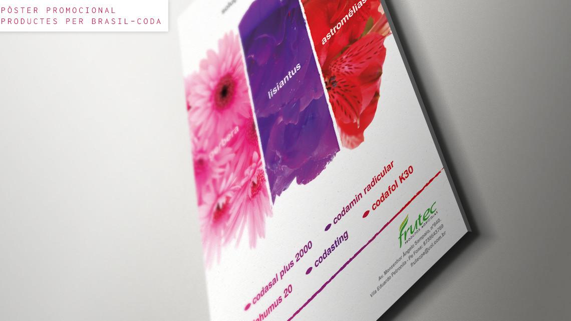 SAS - Coda - Imatge - Pòster de flors per Brasil - EADe