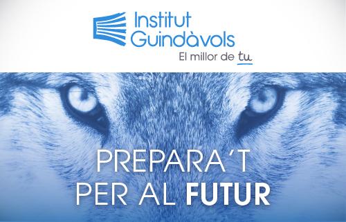 Institut Guindàvols - Formación profesional 2017 - Thumbnail - EADe
